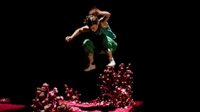 Le problème avec le rose © JC Verchere